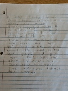 writing realistic fiction 2